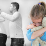 What are the Consequences of Domestic Violence in Florida?